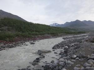 Gulkana Glacier Area